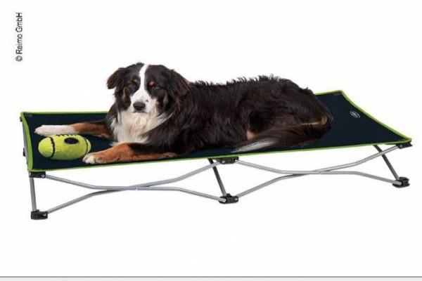 Cama CAMP4 para perros plegable 122 X 62 cm