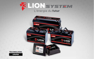 Pack NDS 3Lion System